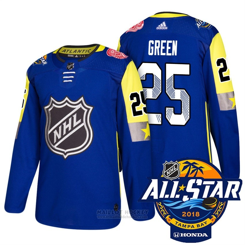 Maillot Detroit Red Wings 25 Mike Vert Bleu 2018 All Star Authentique